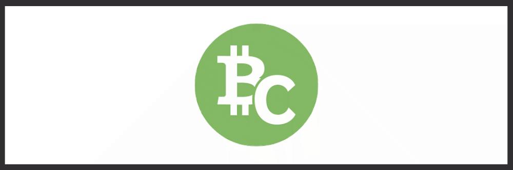 ビットコインキャッシュ BCH