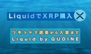 Liquid by QUOINEでリップルを購入 サムネイル
